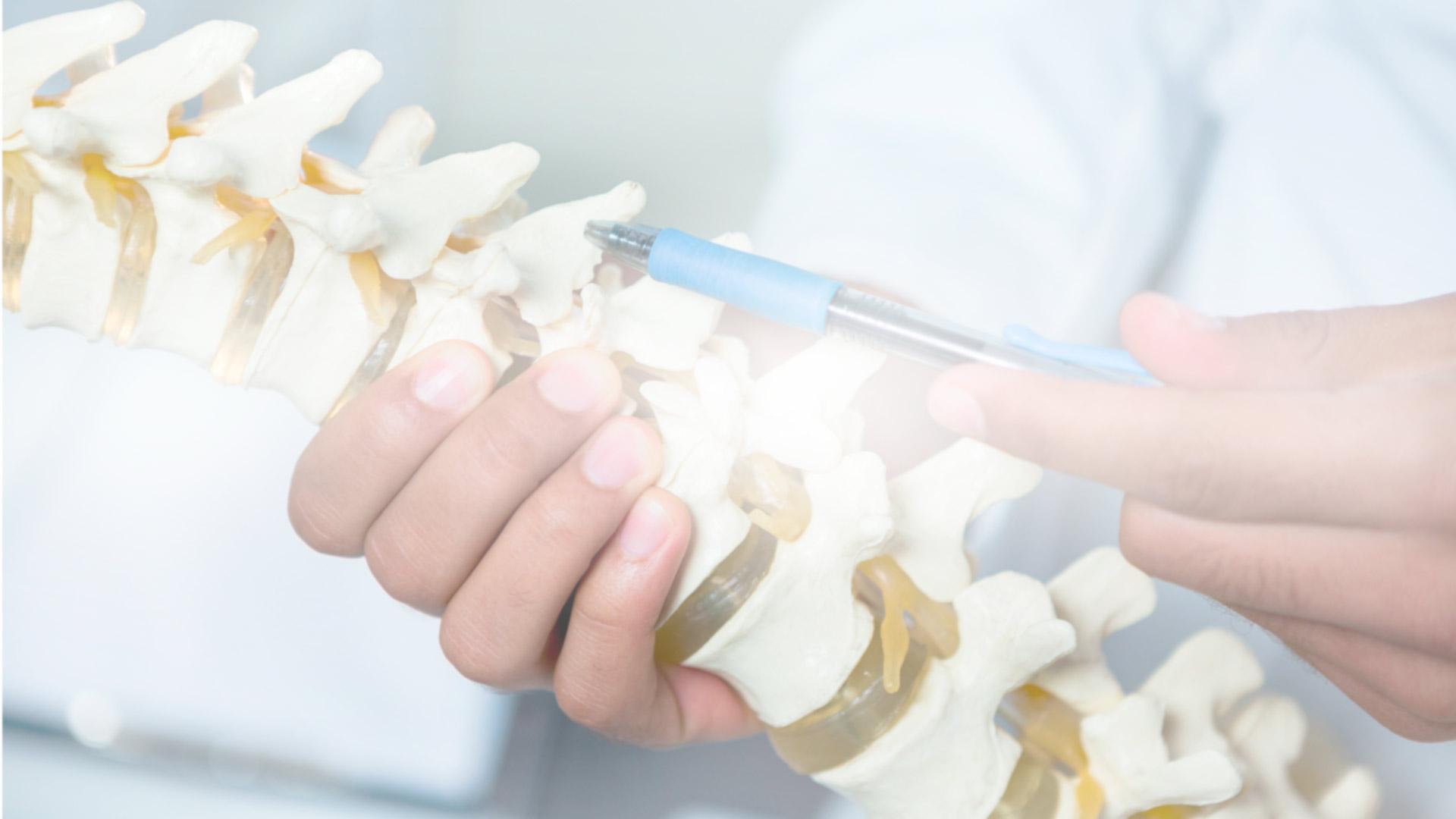 Arzt zeigt auf Wirbelsäule